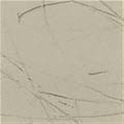 Medium Gray Drawn Antique (GNA1146)